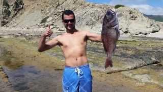 Pesca submarina verano 2014,vol2,pargos,borriquetes,sargos   etc