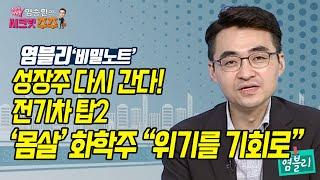 """[염승환의 시크릿 주주] 성장주 다시 간다! 전기차 탑2'몸살' 화학주 """"위기를 기회로"""" …"""