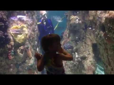 Columbia Aquarium