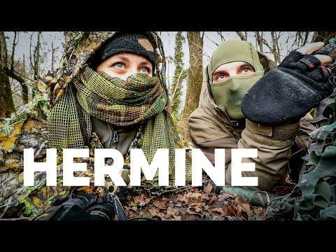 ATTAQUE D'UNE HERMINE - Avec Marie Wild (Photo animalière)