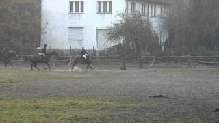 Hubertus Patataj 29-10-2011