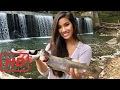 [Relax Fishing]  Her FIRST Trout Ever!!! Trout Fishing the Patapsco River