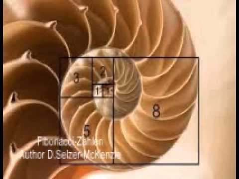 fibonacci zahlen youtube. Black Bedroom Furniture Sets. Home Design Ideas