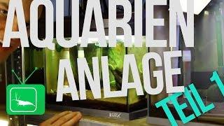AQUARIEN-ANLAGE - Teil 1 | GarnelenTv