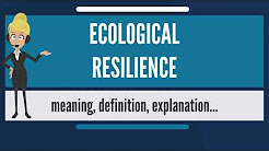 What is ECOLOGICAL RESILIENCE? What does ECOLOGICAL RESILIENCE mean? ECOLOGICAL RESILIENCE meaning
