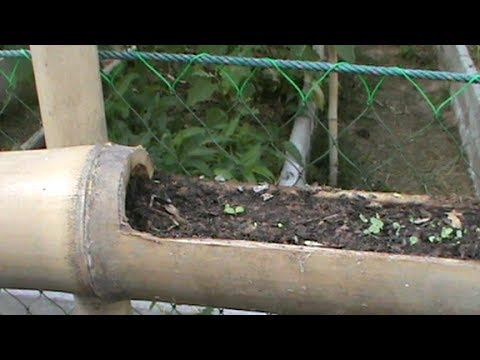 Home Made Bamboo Planter Vertical Gardening Youtube