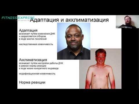 Лекция АДАПТАЦИЯ В ЭВОЛЮЦИИ ЧЕЛОВЕКА. Станислав Дробышевский