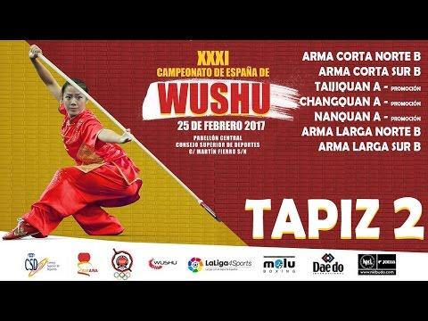 Campeonato de España de Wu-Shu 2017 - Sábado, Tapiz 2