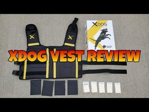 XDog Vest Review!