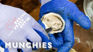 How To Shuck Oysters and Clams