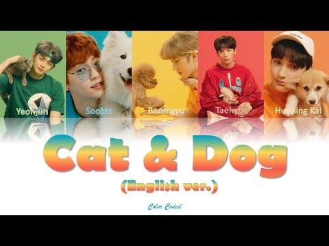 txt(투모로우바이투게더)--cat-&-dog(english-ver.)lyrics-[color-coded-lyrics-eng-가사]