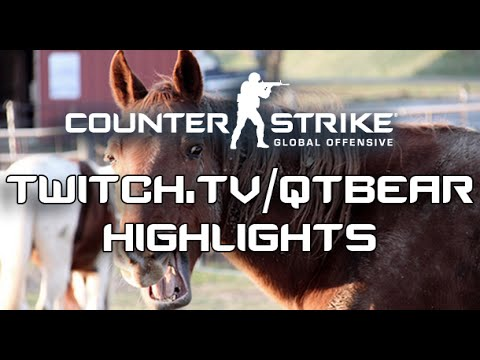 Download A Horse playing CS:GO - Twitch Highlights #3