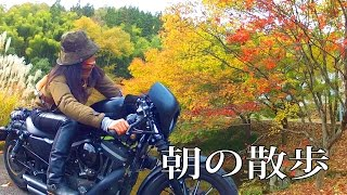 Repeat youtube video CB1100 スポーツスター ZXR 朝の散歩ツーリング動画 バイクで紅葉 郡上 岐阜