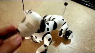 Zoomer Charging problem fix Won't charge Robot Dog Doesn't turn on dead Review