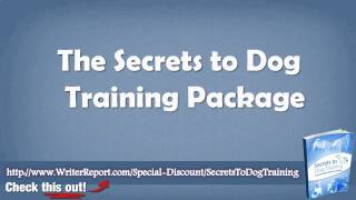 Secrets To Dog Training Buy - Secrets To Dog Training Book