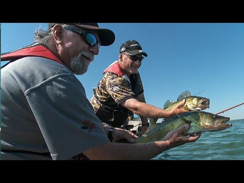 Giant Lures = Giant Alberta Walleye | Fish'n Canada