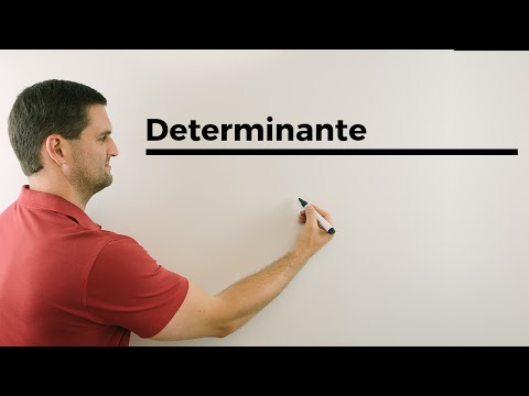 Was gibt die Determinante einer Matrix an? | Mathe by Daniel Jung