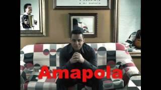Felipe Pelaez - Amapola