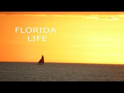 APARTMENT HUNTING  - TAMPA BAY AREA FLORIDA