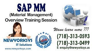 SAP MM(Material Management) - Training Session-1 - Tutorial - Newyorksys.com