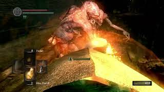 Dark Souls part 16
