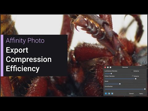 Export Compression Efficiency (Affinity Photo)