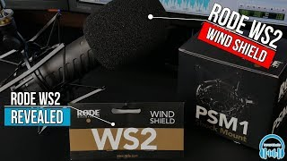 Rode WS2 Wind Shield | REVEALED