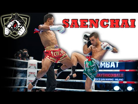 The Best Muay Thai Fighter - Saenchai HL 2015