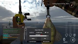 Fishing Planet - Unique Yellow Perch in Michigan