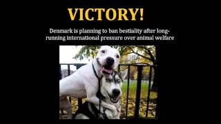 Victory! Denmark is planning to ban bestiality!