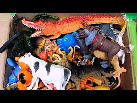 Mengenal Lebih Banyak Nama-Nama Hewan Dan Binatang Dalam Bahasa Inggris - Video Edukasi Anak Pintar