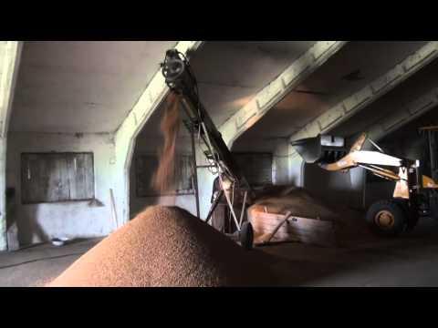Самодельный шнек. Травим зерно. Производство шнековых транспортеров