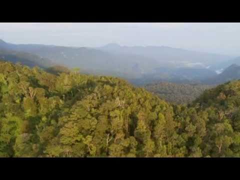 The Beauty of Papua New Guinea [HD]