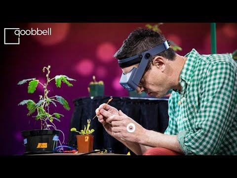 Грег Гейдж: Электрические эксперименты с растениями которые умеют считать и общаться