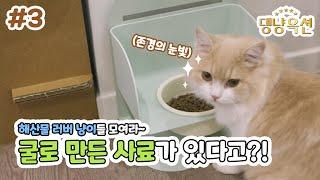 댕냥옥션 #3 | 해산물 러버 냥이들을 위한 고양이사료…