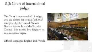 International Court of Justice: Human Rights Cases (Lecture 6)