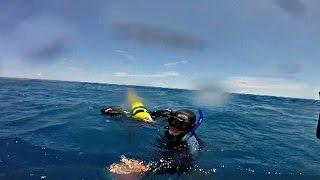 В Австралии спасли дайвера, который провёл в океане 17 часов (новости)(http://ntdtv.ru/ В Австралии спасли дайвера, который провёл в океане 17 часов. Австралийский аквалангист, можно..., 2016-11-09T12:09:38.000Z)