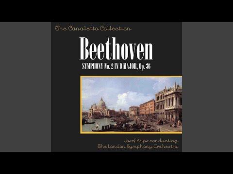 Beethoven: Symphony No. 2 In D Major, Op. 36: 4th Movement - Adagio Molto