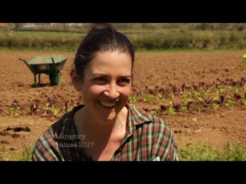 How To Establish As Community Supported Agriculture Project CSA