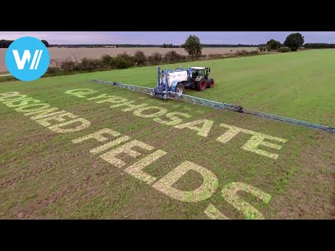 Poisoned Fields - Glyphosate, the underrated risk? (HD 1080p