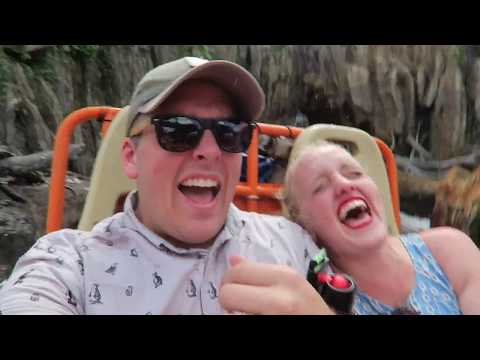 An End to the Plane Crazy Button Club | Animal Kingdom & Special Delivery!