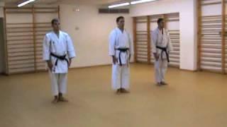 Oyo Bunkai Pinan Nidan (www.karateBCN.com)