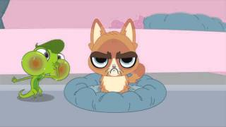 Littlest Pet Shop Shorts - Sour Puss
