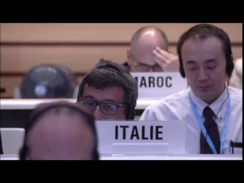 """Italy votes """"Yes"""" to single out Israel at UN's 2016 World Health Assembly"""