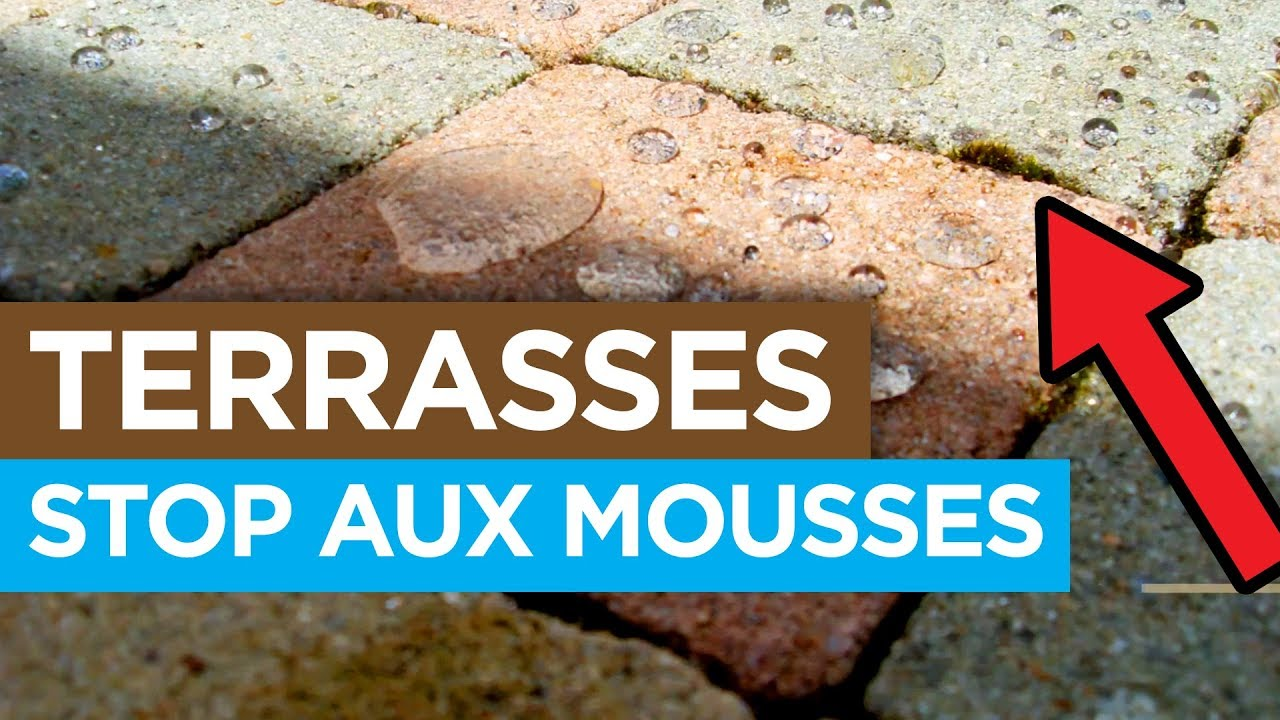 Anti Mousse Naturel Terrasse stop aux mousses sur la terrasse ! [traitement nanoprotection]