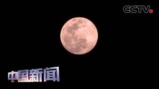 """[中国新闻] 今年最大""""超级月亮""""8日凌晨亮相   CCTV中文国际"""