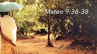 Mateo 9:36-38, por Peter Walker