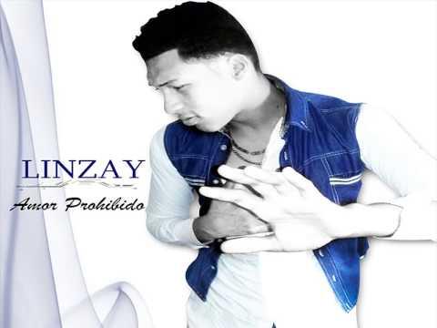 linzay-dilema de amor
