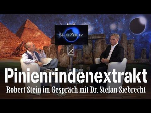 Vital mit Pinienrindenextrakt - Dr. Stefan Siebrecht im Gespräch mit Robert Stein