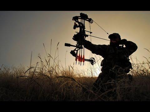 """Охота с луком? В России? """"Санёк расскажет"""" / блочный лук / арбалет / #Охота / #Hunter / #Hunting"""